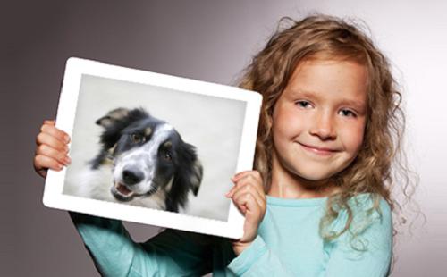 השתלמות למתנדב למען בעלי החיים