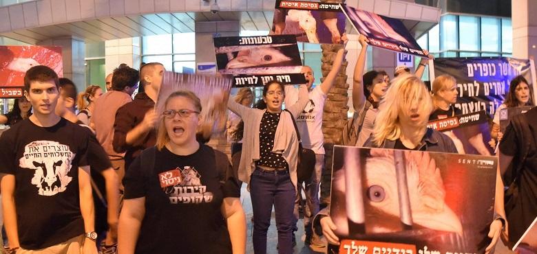 זכות המחאה