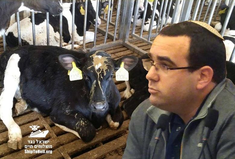 דה-לוי תוצרת חקלאית