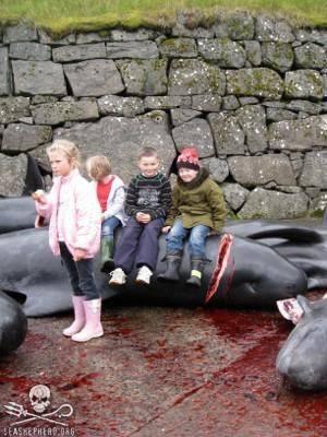 ילדים יושבים על דולפין שנשחט
