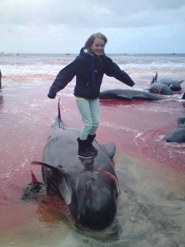 ילדה עומדת על דולפין שנשחט