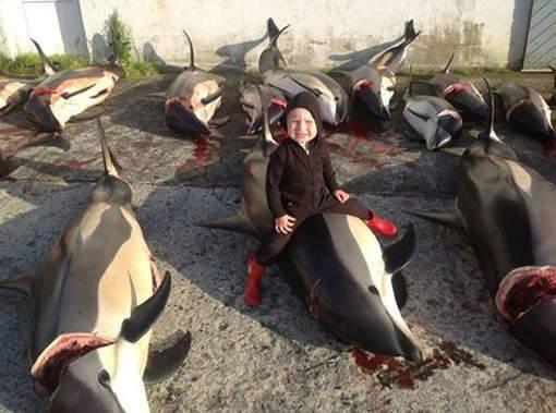 ילד יושב על דולפין שנשחט