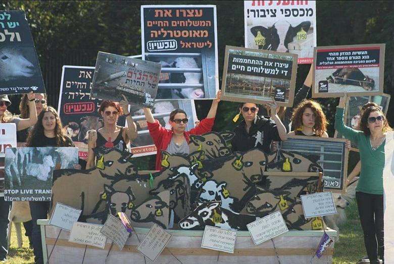 הפגנה נגד המשללוחים החיים