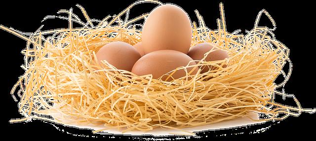 ביצי חופש לטבעונים