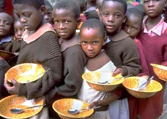 האוכל בו מואבסות חיות משק יכול להאכיל את הרעבים