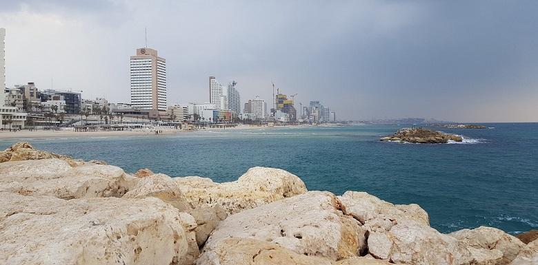 תל אביב - אחד היעדים התיירותיים הטובים ביותר לטבעונים