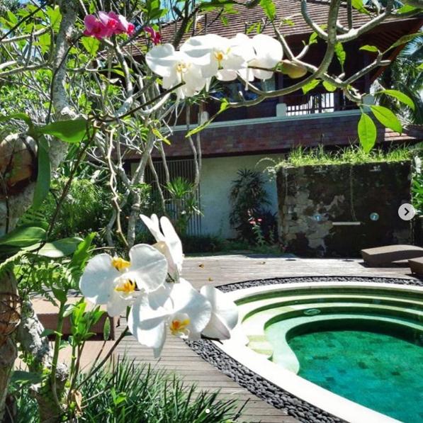 ביינגסטבא - אובוד, באלי, אינדונזיה