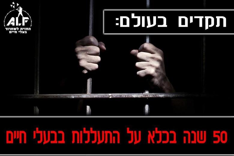 תקדים בעולם: 50 שנה בכלא על התעללות בבעלי חיים