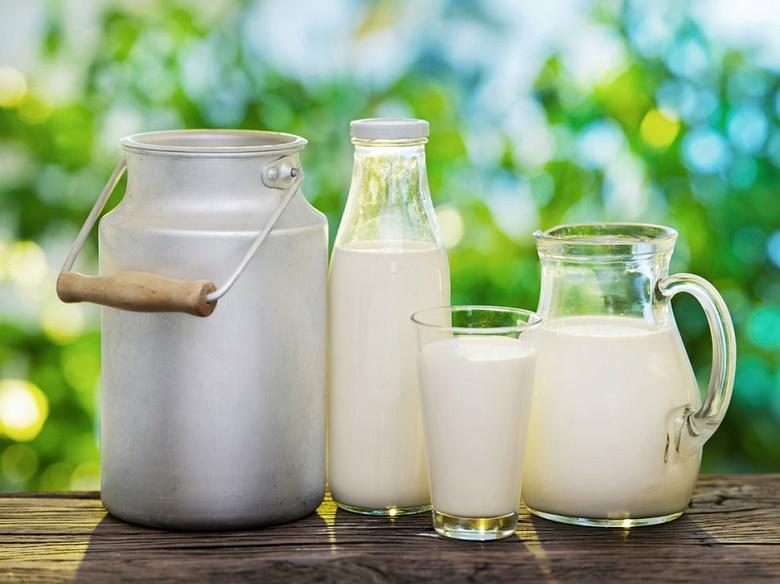 חדשות מועצת החלב