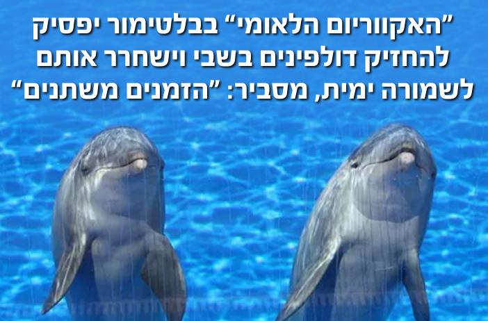 האקווריום הלאומי בבוליטמור יפסיק להחזיק דולפינים בשבי