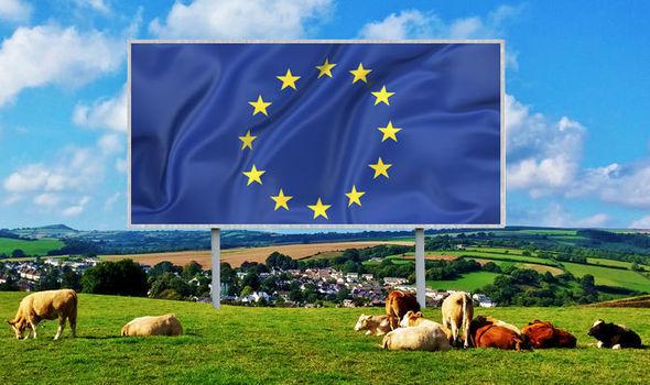 האיחוד האירופי דורש שאירופה תעבור לטבעונות