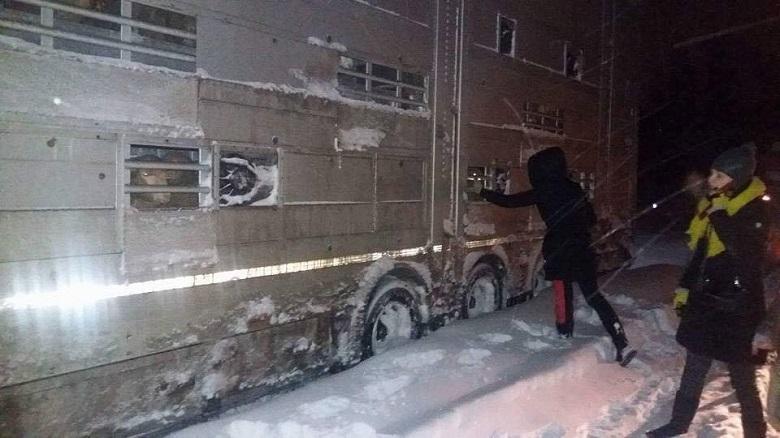 אסון קשה במשלוחים החיים ברומניה