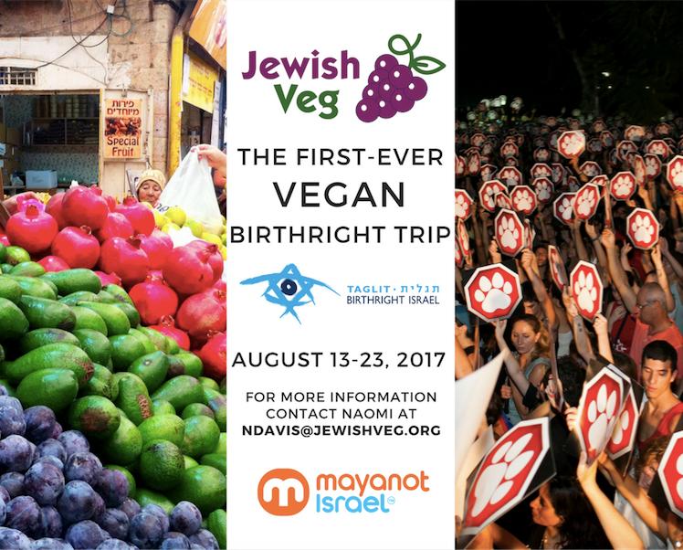 ג'ואיש ויג עורך את הטיול הטבעוני הראשון שלו בישראל