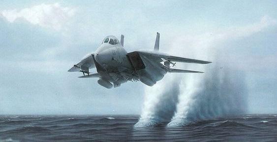 חיל האוויר האמריקאי יטיל פצצות באוקיינוס תוך פגיעה בבעלי חיים רבים
