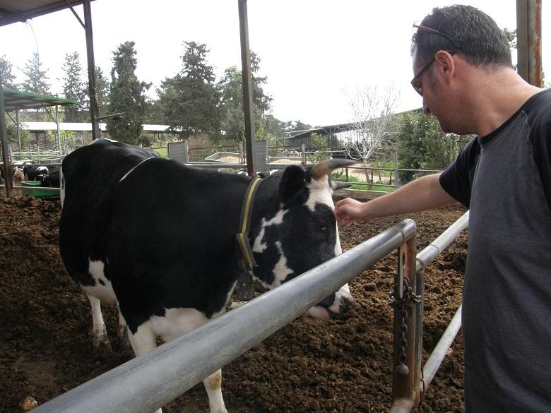 דאגת צרכנים לרווחת בעלי חיים הגיעה לכדי מסה קריטית