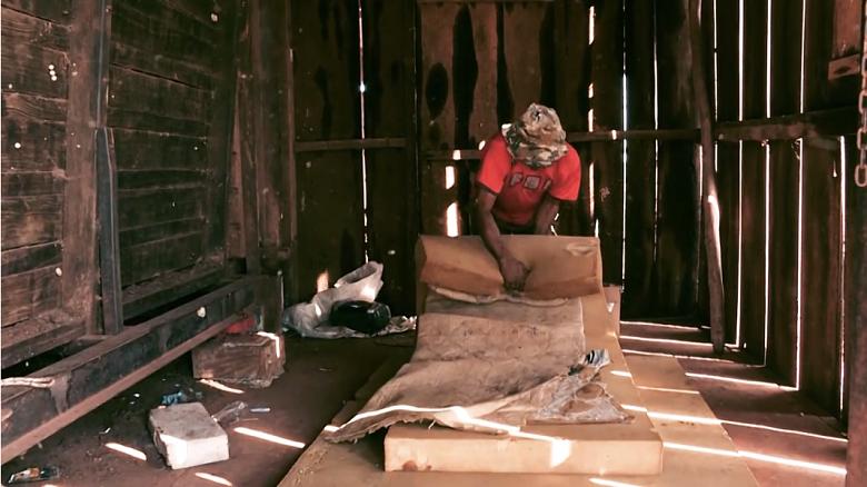 ברזיל: אלפי עבדים מועסקים ברפתות
