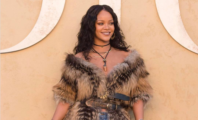 ריהאנה חטפה ביקורת לאחר שהופיעה עם מעיל פרווה