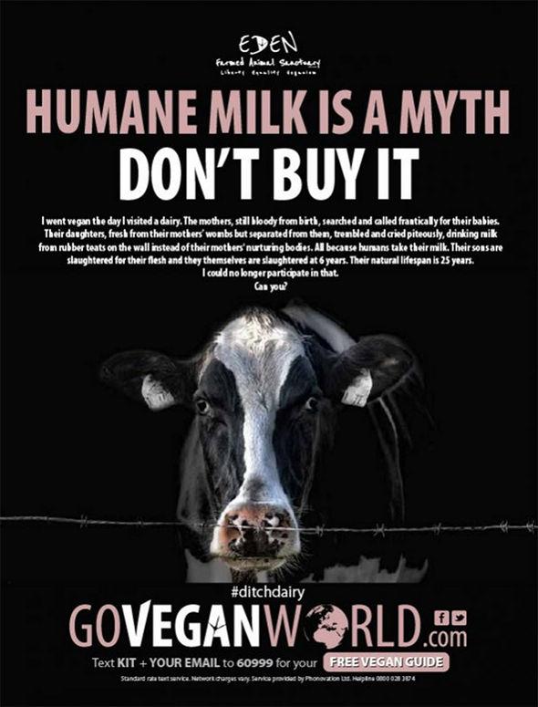 חלב הומני זה מיתוס