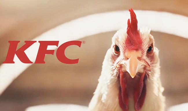 פרסומת של KFC עושה הסברה טבעונית