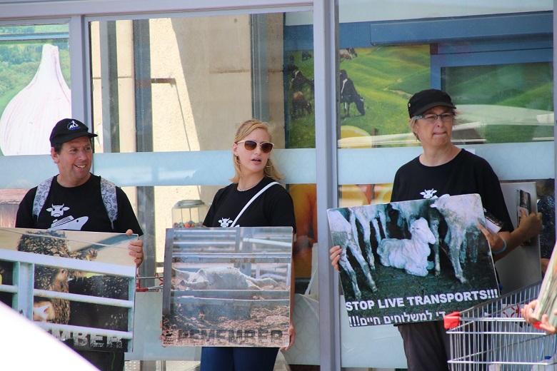 פעילים הפגינו מול חנות מפעל היבואן דבאח נגד משלוחים חיים