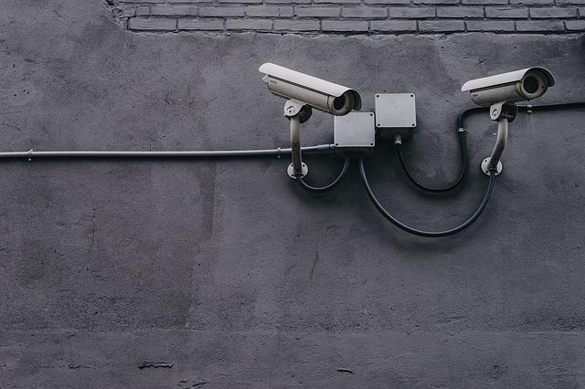 אנגליה מחייבת הצבת מצלמות במעגל סגור בבתי מטבחיים
