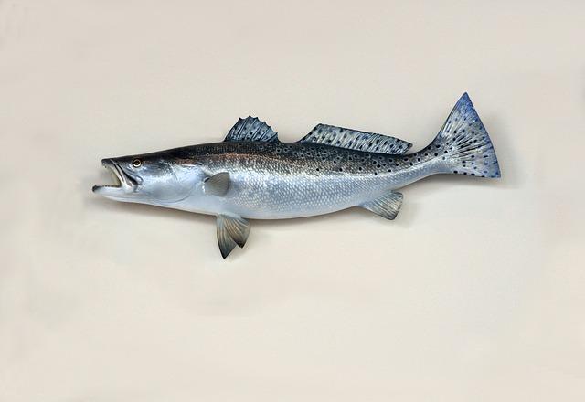 ויינט: חיידקי ליסטריה מונוציטוגנס התגלו בדגים