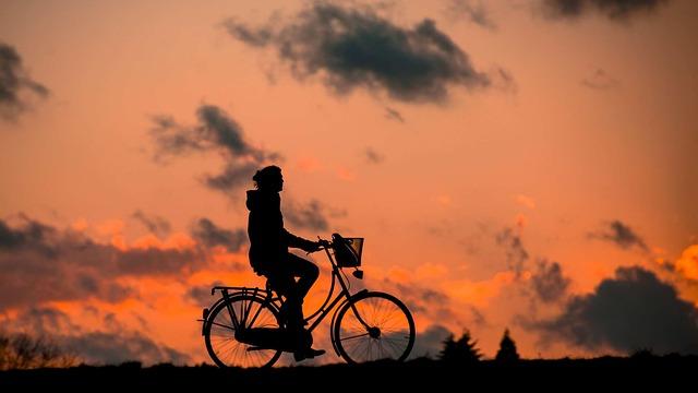 אקטיביסט חוצה את הודו באופניים למען בעלי החיים
