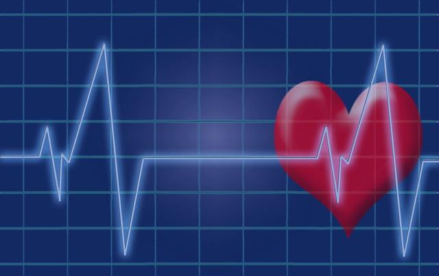 ניוזוויק: טבעונות מקטינה את הסיכון למחלות לב בכמעט חצי