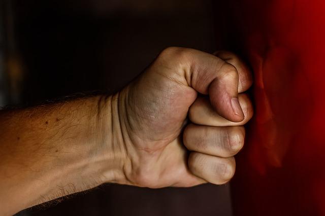 עוף והודו ברקת: אלימות כלפי פקחי משרד החקלאות