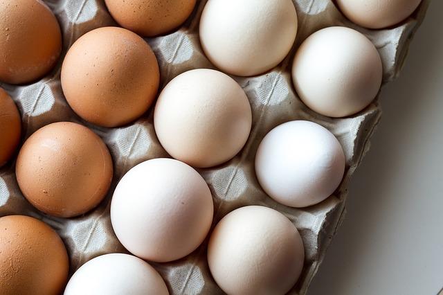 עליית מחירי הביצים מחזקת את החלופות הטבעוניות