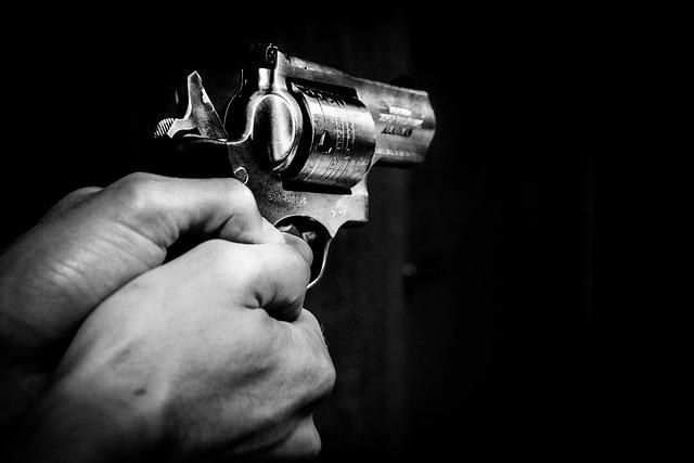 רוצח ההמונים מפלורידה: מכור לרובים שהרג בעלי חיים