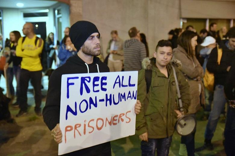 Free All Non-Human Prisoners
