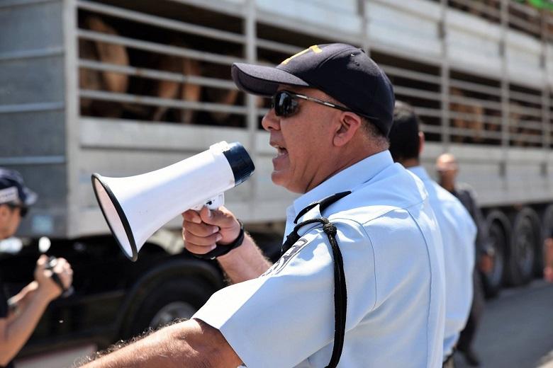 מפקד כוח המשטרה פונה אל הפעילים על רגע משאית העגלים