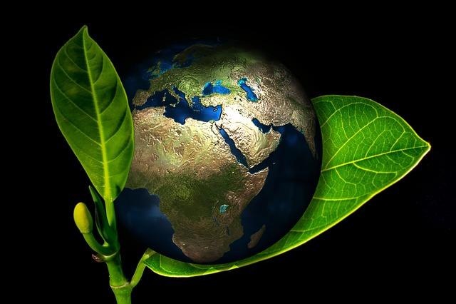 אוקספורד: טבעונות היא הדרך היחידה להציל את כדור הארץ