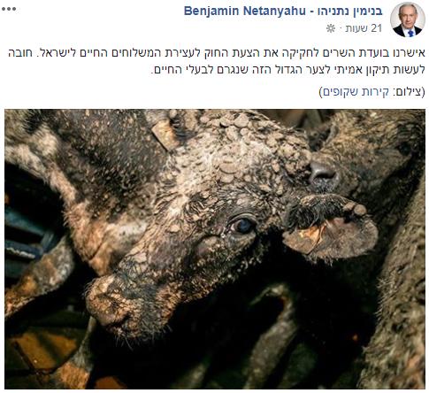הפוסט של נתניהו בפייסבוק (צילום מסך)