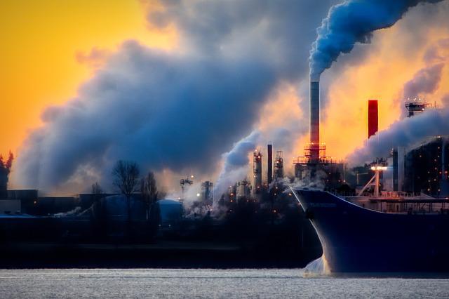 תעשיות בעלי החיים עוקפות את תעשיית הנפט כמזהמים הגדולים בעולם - מחקר חדש