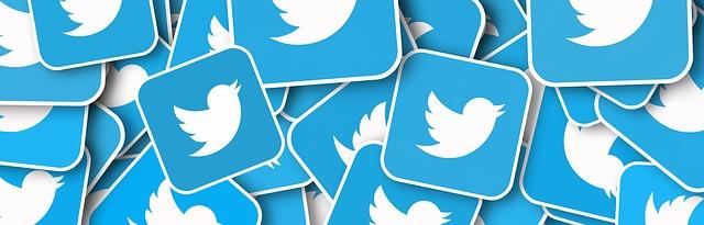 טוויטר: טבעונות היא הנושא הפופולרי ביותר בתחום האוכל