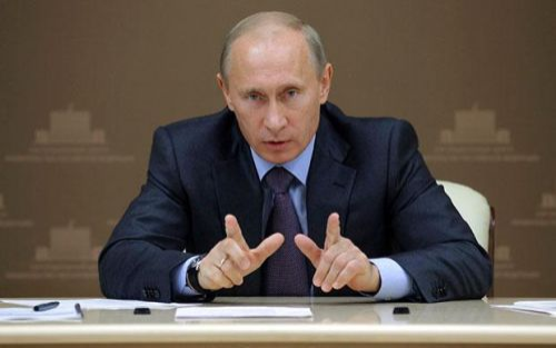 רוסיה: פוטין חתם על חוקים חדשים בנושא בעלות על חיות מחמד