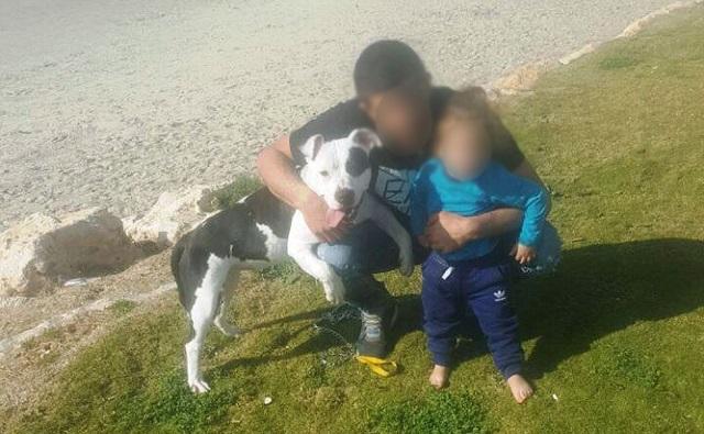שישה חודשי עבודות שירות לאדם שהרג את כלבת חברו