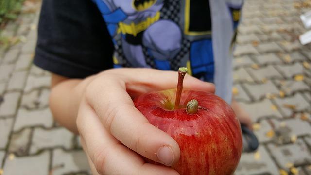 בתי ספר ב-62 מחוזות בניו יורק אימצו אתגר טבעונות בן 10 ימים