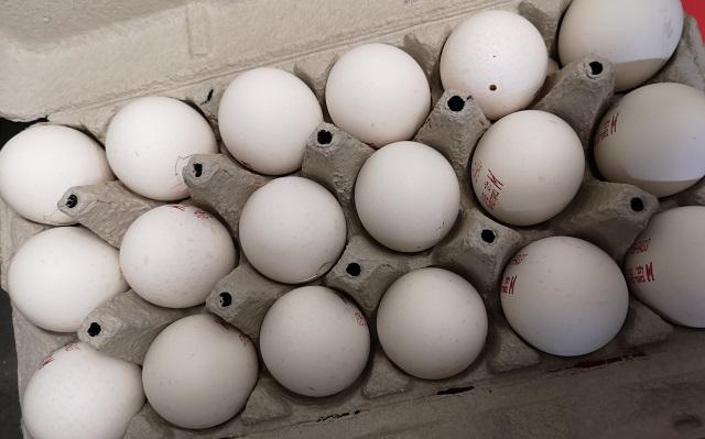 תנובה: הפסדים בתחומי הביצים והעופות