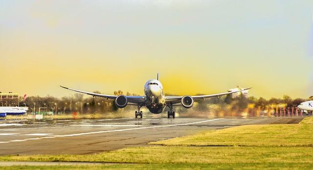 אתר חדש מאפשר לדרג ארוחות טבעוניות בטיסות