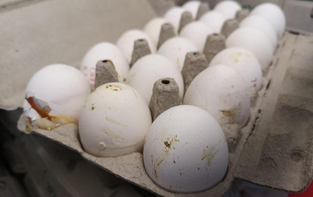 תנובה: אקרית אדומה בביצים