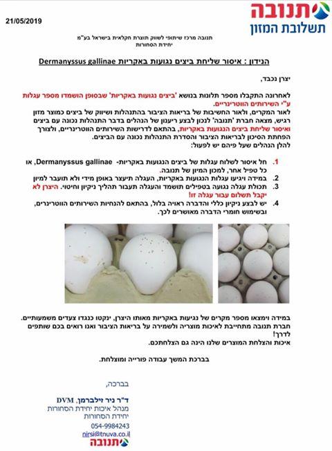 איסור שליחת ביצים נגועות באקריות