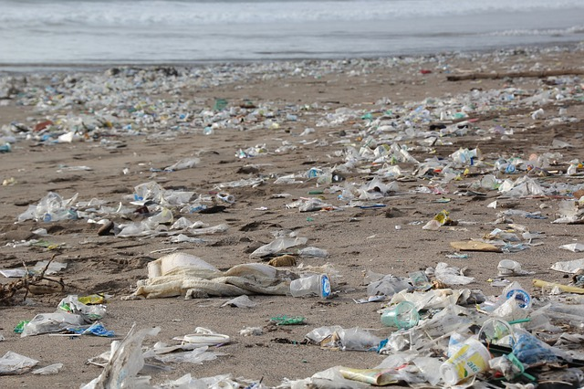 הצעת חוק: לאסור הכנסת שקיות פלסטיק וכלים חד פעמיים לחופי הים