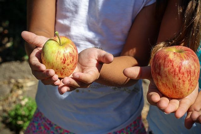 צרפת: בתי ספר יגישו ארוחות ללא בשר לפחות פעם בשבוע