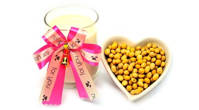 טרה נכנסת לשוק החלופות הטבעוניות למוצרי חלב