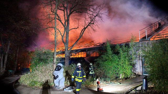 יותר מ-30 בעלי חיים נספו בשריפה בגן חיות