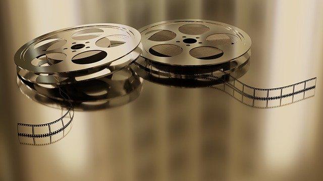 אתר חדש מרכז 200 סרטים עם מסר בעד בעלי חיים