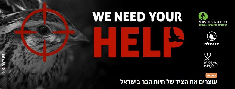מאבק חוצה ארגונים לעצור את הציד בישראל